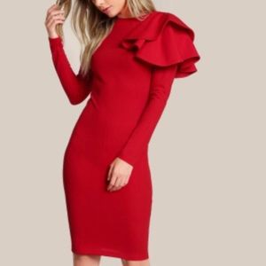 Shein Form Fitting Red Dress